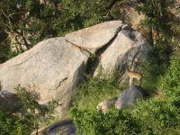 femke-ii-kruger-jan-2011-467