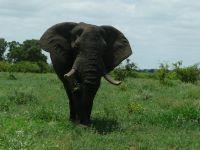 marjo-mopani-eerste-week-2011-056