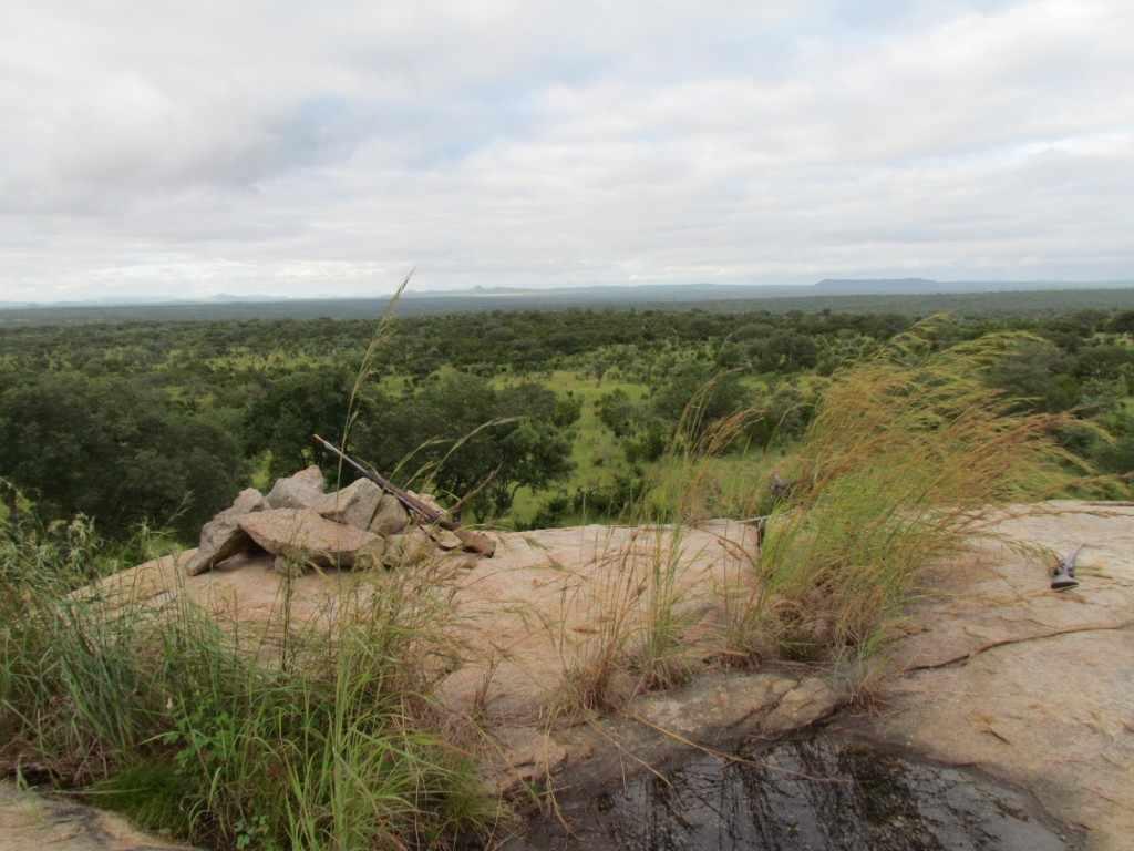bush walk Skukuza - stille getuige van dreigend gevaar in een schitterend panorama