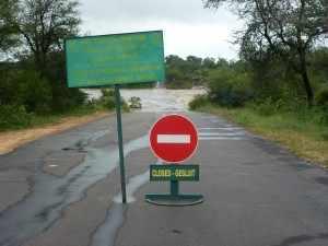Regen Krugerpark. Met name de lage dammetjes, die voor een verbinding van de beide oevers zorgen, worden overspoeld door het wassende water in de rivieren. Deze zijn nu allemaal afgesloten. Marjo Kruger 2012 312