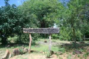 Krugerpark bekendste wildparken in Afrika bescherming te bieden aan het wildleven dat langzaam aan door de intensieve jacht met uitsterven bedreigd raakte.