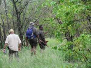Bush walk in het Krugerpark, 11 januari 2011 - tijdens de bush walk blijkt de enorme rijkdom aan wildlife in het Krugerpark