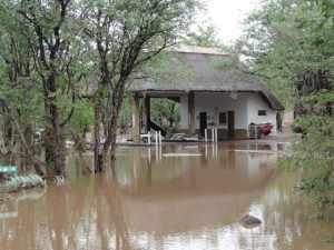 Regen Krugerpark. Restcamp Shingwedzi is nog steeds niet toegankelijk, daar moet eerst nog de schade hersteld worden. De foto toont de gevolgen van de regen in het Krugerpark bij het benzinestation in Shingwedzi. Met name de lage dammetjes, die voor een verbinding van de beide oevers zorgen, worden overspoeld door het wassende water in de rivieren. Deze zijn nu allemaal afgesloten. Marjo Kruger 2012 312