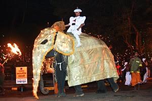 kandy-perehara-elephant