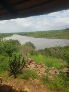 Krugerpark berichten van 9 januari 2017