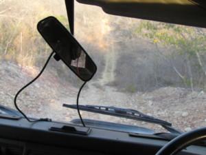 op zoek naar wilde honden in de protected area bij Hwange National Park